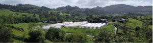 Ecological horticultural production center